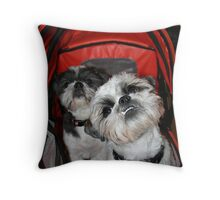 My best smile! Throw Pillow