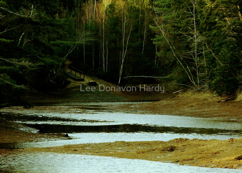 Quiet Cove by Lee Donavon Hardy