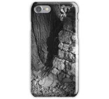 The Tree of Wisdom iPhone Case/Skin