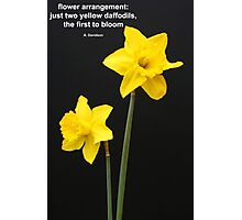 Daffodils Quotation Photographic Print