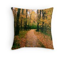 Pathways - Autumn Rain at 1,000 Islands Throw Pillow