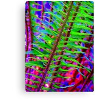 Psychedelic ferns  Canvas Print