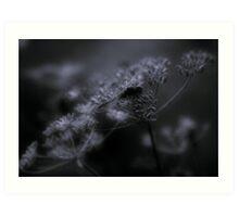 Dragonfly, perching Art Print
