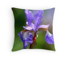 Wet and Windy Throw Pillow