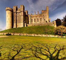 Arundel Castle by Sarah  Dawson