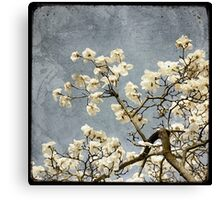 Un Peu du Printemps #6 Canvas Print