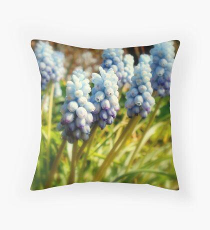Bluebells - Altamont gardens Throw Pillow