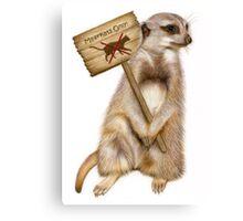 Meerkats Only Canvas Print