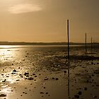 Crossing Pilgrim's Way - Lindisfarne by Phil Simms