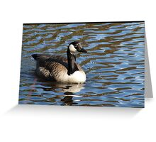 Water World - Lady of the Lake Greeting Card