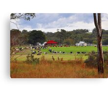 A Couple Of Visitors Canvas Print