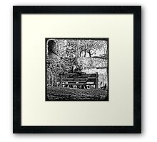 lovely afternoon Framed Print