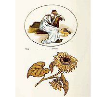 Language of Flowers Kate Greenaway 1884 0050 Descriptions of Specific Flower Significations Photographic Print