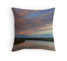 Irrigation channel, in the pink Throw Pillow