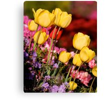 Golden Cups for the Garden Canvas Print