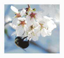 Bumble Bee In The Apple Blossoms T-Shirt