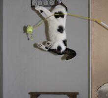 Flip! by starbucksgirl26