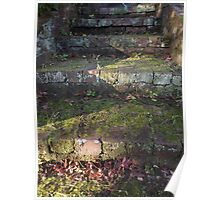 The Moss & The Stairs Poster