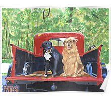 Antique Fire Truck with Dogs Poster