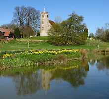 Idyllic Suffolk ( St Mary's Church, Aldham ) by wiggyofipswich