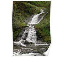 Annice Falls at Sweet Creek Poster