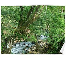 La Poza del Cajon, river near San Juan de Puriscal Poster