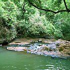 La Poza del Cajon, San Juan de Puriscal by Guy Tschiderer