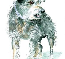 Scruffy the Rescue by Yvonne Carter