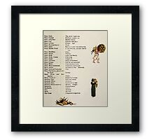 Language of Flowers Kate Greenaway 1884 0041 Descriptions of Specific Flower Significations Framed Print