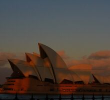 Sunset over Sydney Harbour by TrinityCentaur