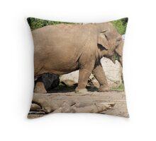 Elephant - Chester Zoo Throw Pillow