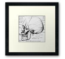 Retro Anatomy Framed Print