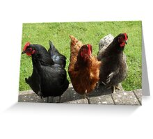 Hen Party Greeting Card