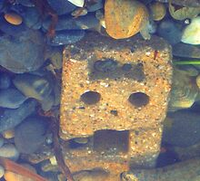 Run! There's A Cyberman In The Pebbles! by Charlotte Stevens