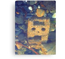 Run! There's A Cyberman In The Pebbles! Canvas Print