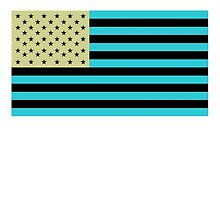 American Flag, Stars & Stripes, Negative, Inverted, America, USA by TOM HILL - Designer