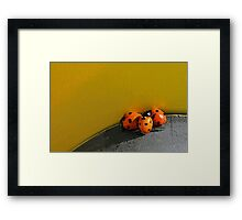 Ladybird Huddle Framed Print