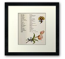 Language of Flowers Kate Greenaway 1884 0031 Descriptions of Specific Flower Significations Framed Print
