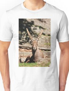 Ibex male Unisex T-Shirt