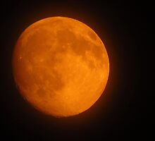 The Orange Moon  by lorilee
