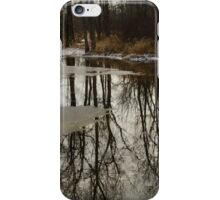Of Trees and Mirrors - Prince Edward County Forest iPhone Case/Skin