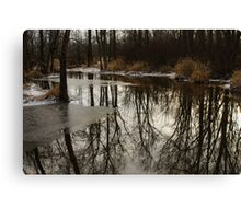 Of Trees and Mirrors - Prince Edward County Forest Canvas Print