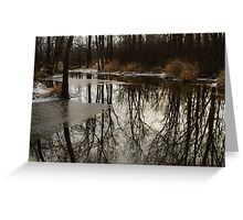 Of Trees and Mirrors - Prince Edward County Forest Greeting Card