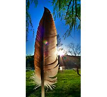 Of a Feather Photographic Print