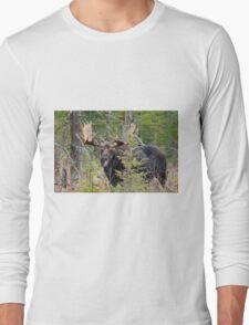 Bull moose - Algonquin Park, Ontario Long Sleeve T-Shirt
