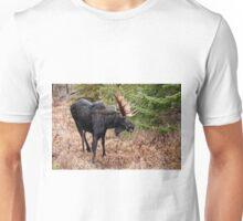 Bullwinkle - Algonquin Park, Ontario Unisex T-Shirt