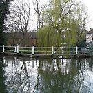 Hemel Hempstead Canal by amy4vince