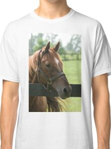 Creator - Old Friends Equine, Kentucky Classic T-Shirt