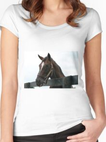 Sunshine Forever RIP - Old Friend's Equine  Women's Fitted Scoop T-Shirt