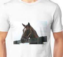 Sunshine Forever RIP - Old Friend's Equine  Unisex T-Shirt
